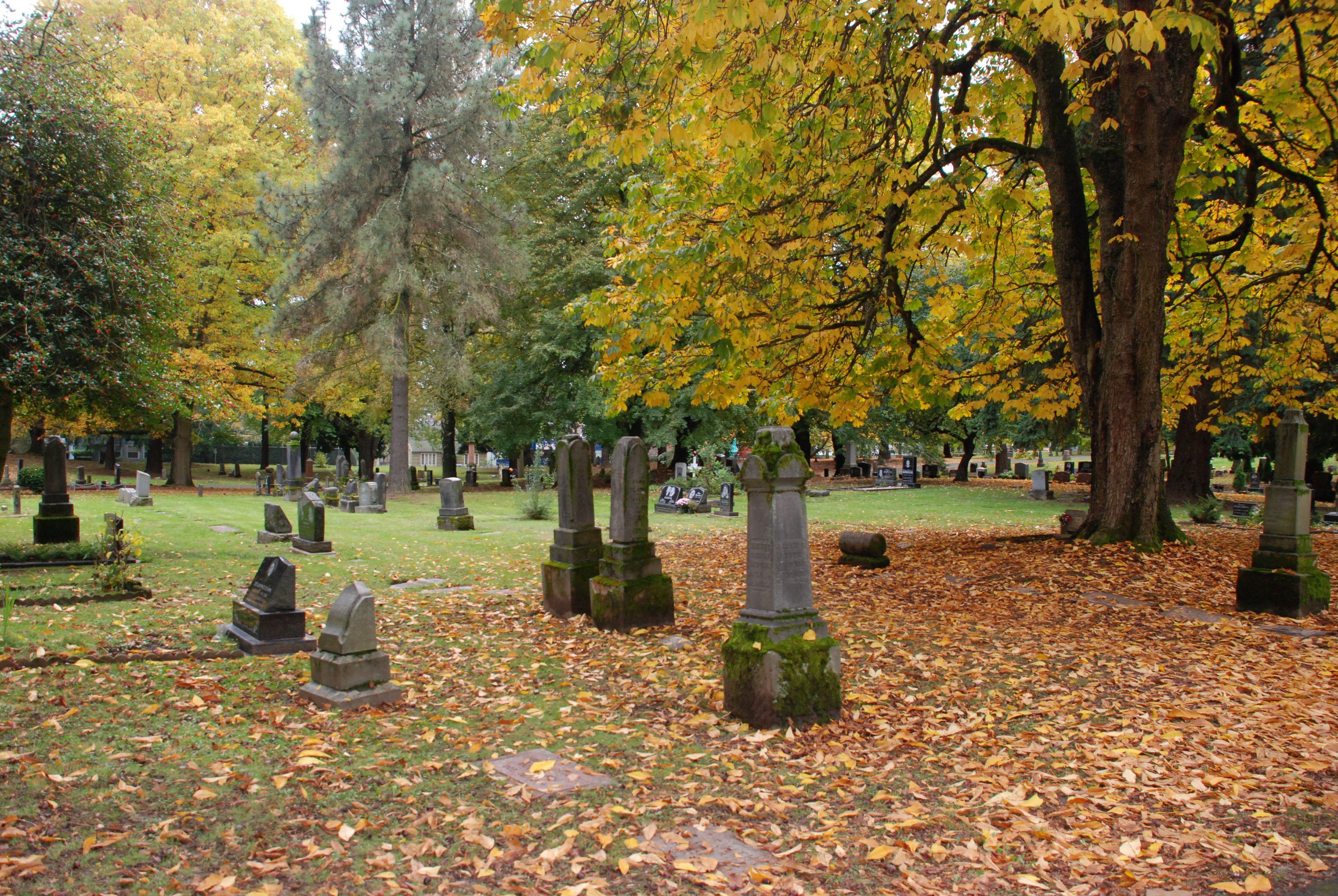 Lone Fir Cemetery Metro