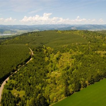 a photo of an aerial view of forest, grassland and a river