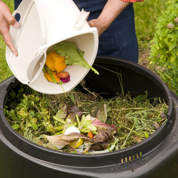 photo of composting food scraps