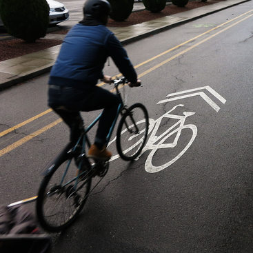photo of a sharrow and cyclist
