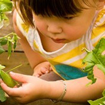 photo of a little girl in a garden