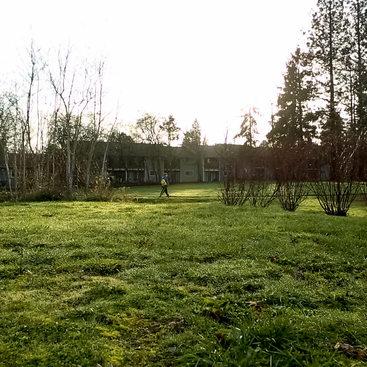 Eichler Park field