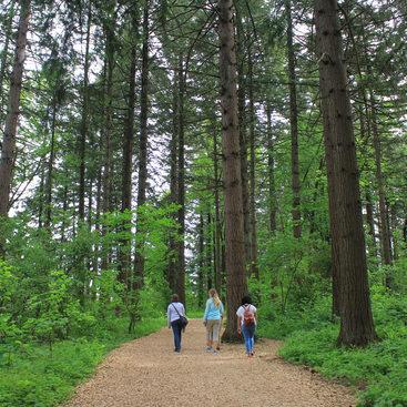 People walking on trail at Glendoveer Nature Park.