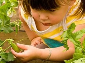 photo of a little girl in a garden