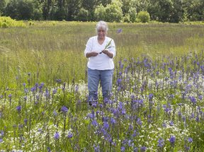 photo of Louise Wilmes at Quamash Prairie