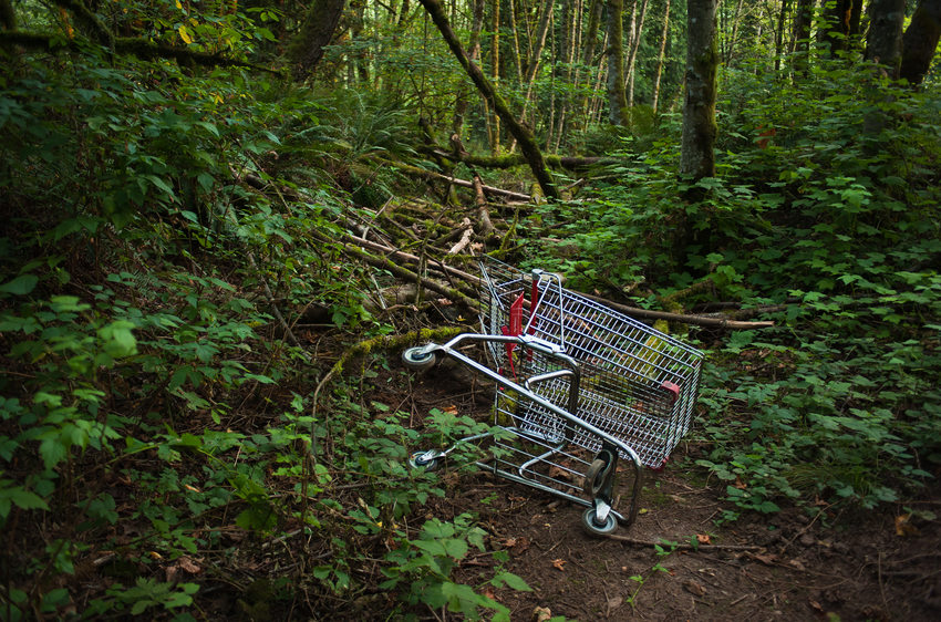 photo of abandoned shopping cart at Newell Creek Canyon