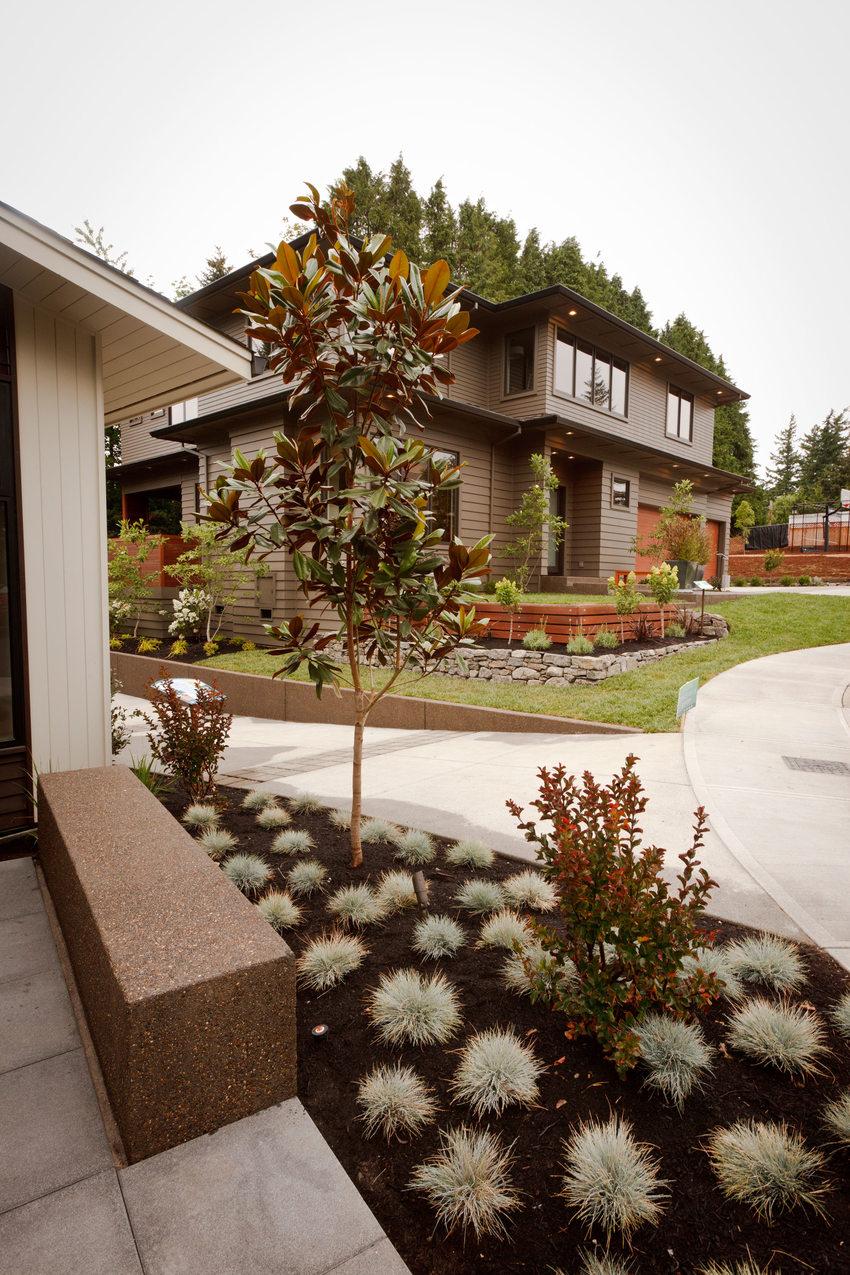 photo of nature-friendly development