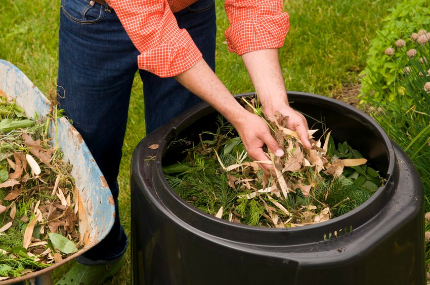 Tips For Composting Success Metro