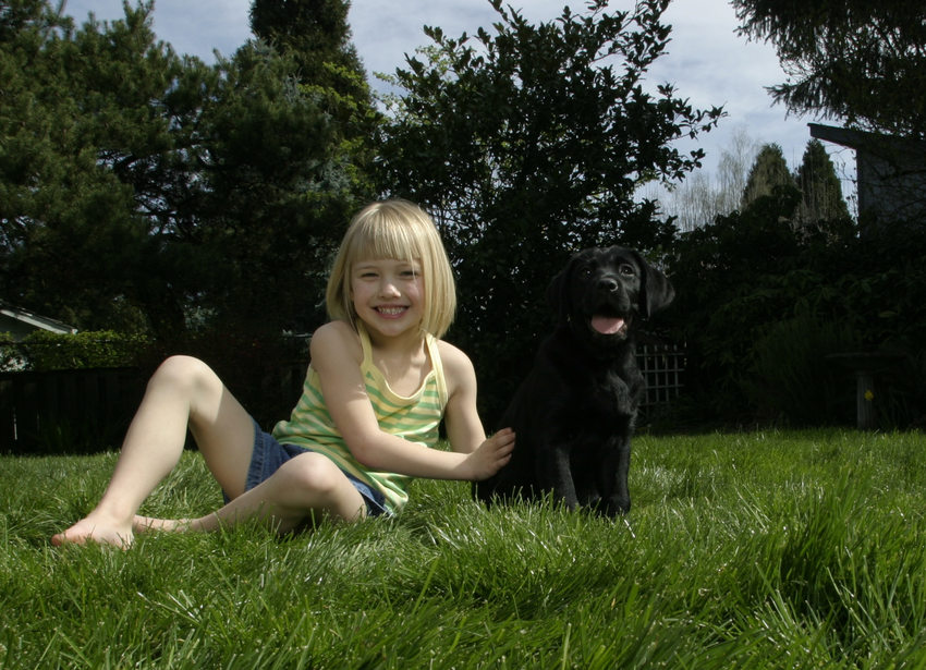 photo of girl and puppy in the grass
