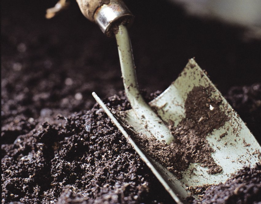 photo of a spade in soil