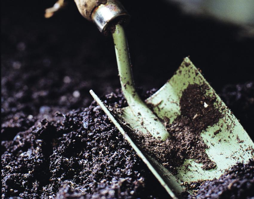 Photo Of A Spade In Soil
