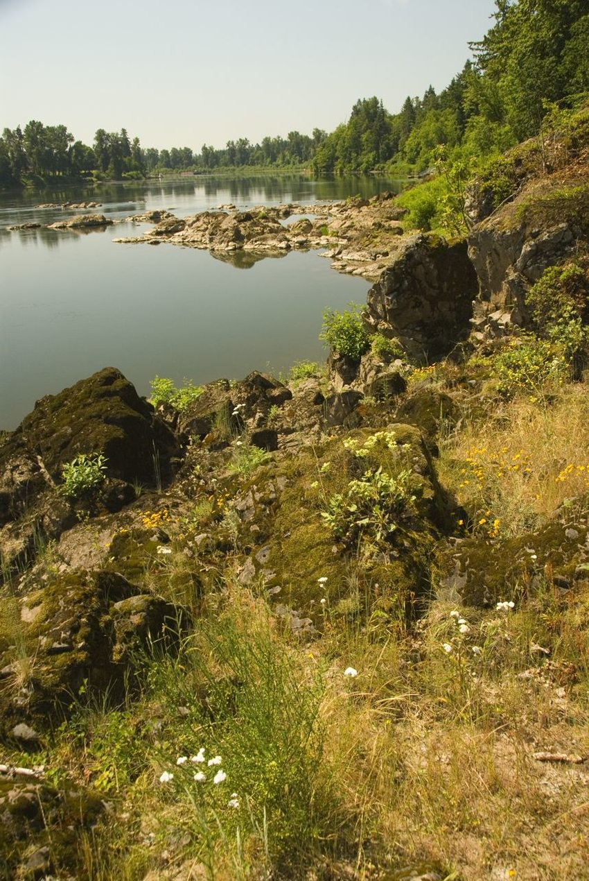 photo of rocky banks along the Willamette River