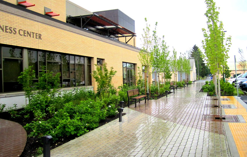 photo of Virginia Garcia Wellness Center green alley