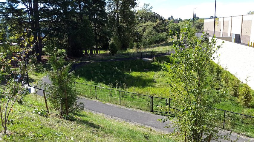 Path behind the Wal-Mart in Tigard