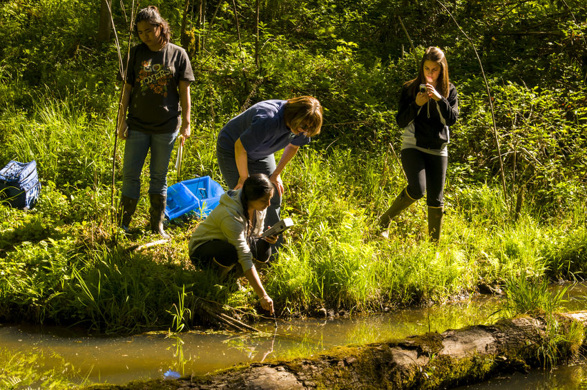 photo of Pacific University students conducting research at Chehalem Ridge