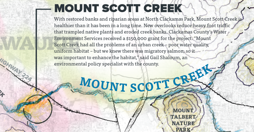 With restored banks and riparian areas at North Clackamas Park, Mount Scott Creek is healthier than it has been in a long time. New overlooks reduce heavy foot traffic that trampled native plants and eroded creek banks.