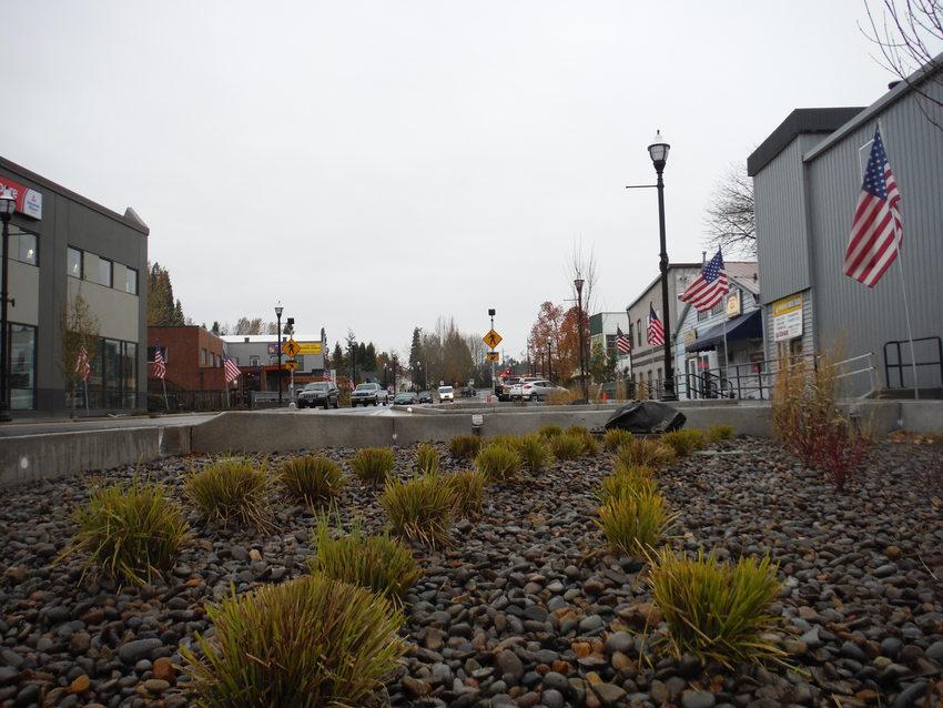 New Main Street bioswale