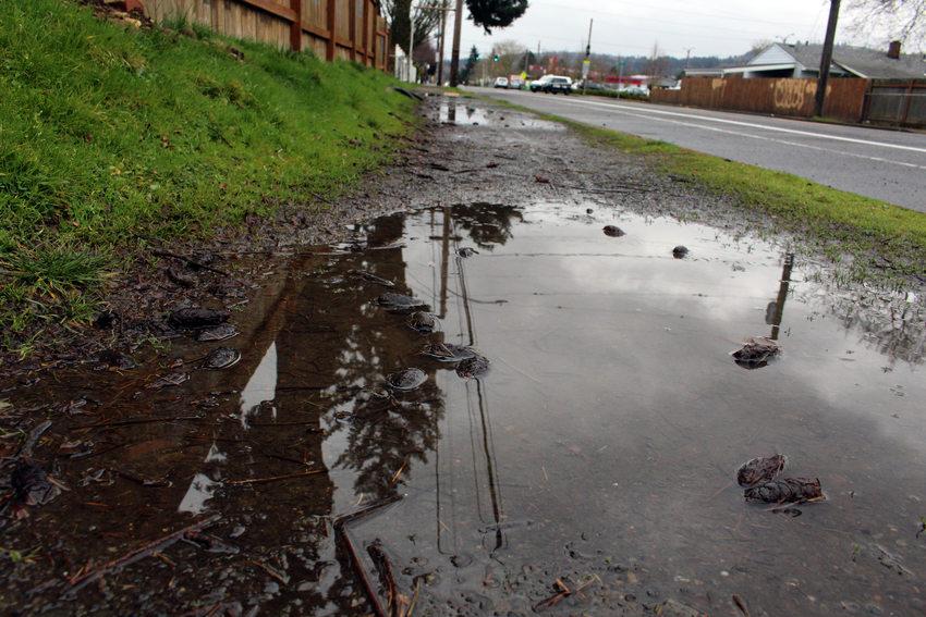 unpaved sidewalk