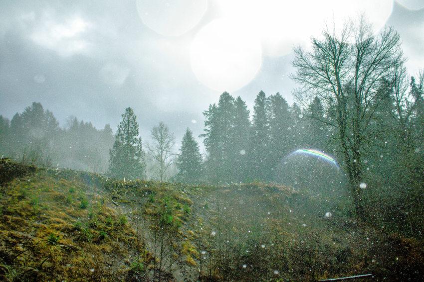 photo of rain at Oxbow Regional Park