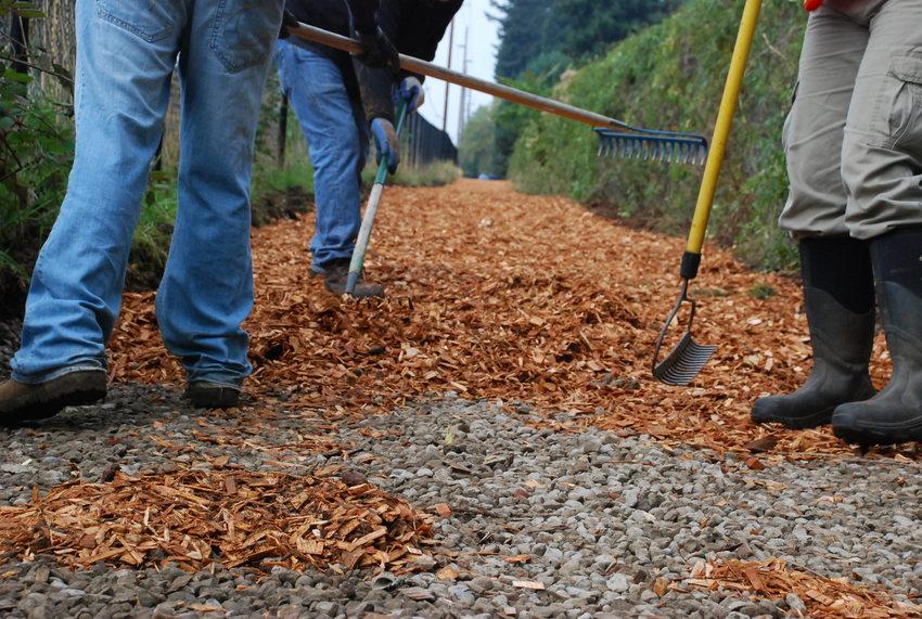 Volunteers improving trail at Glendoveer nature trail