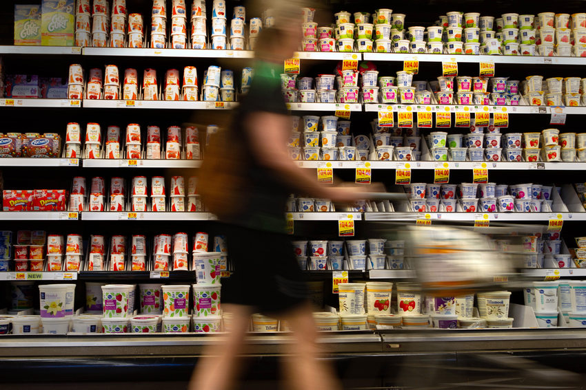 a shopper pushes a shopping cart past shelves of refrigerated yogurt