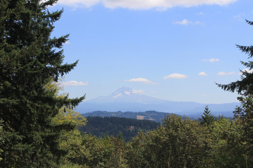 The view of Mount Hood from the Scouters Mountain Nature Park picnic area