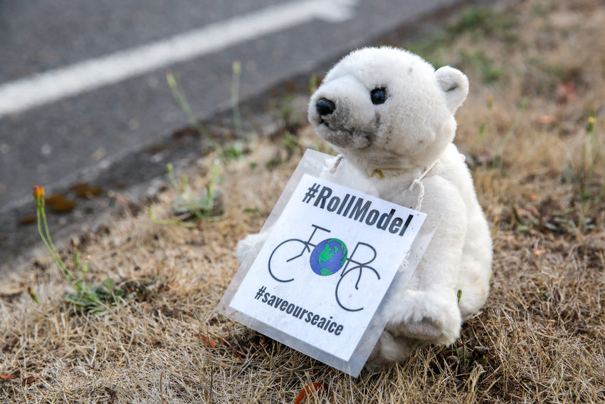 Stuffed polar bear holding #RollModel sign