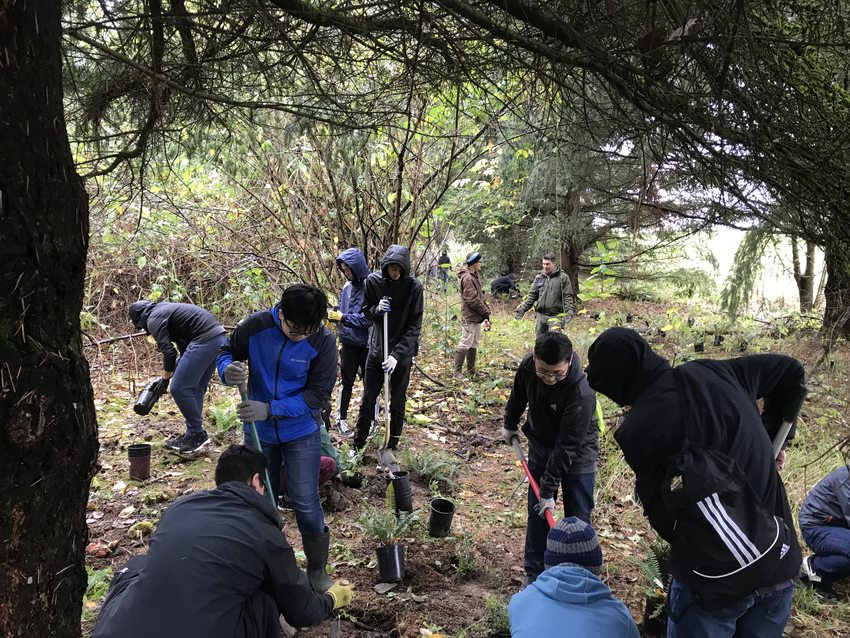 Student volunteers plant native plants at Blue Lake Regional Park