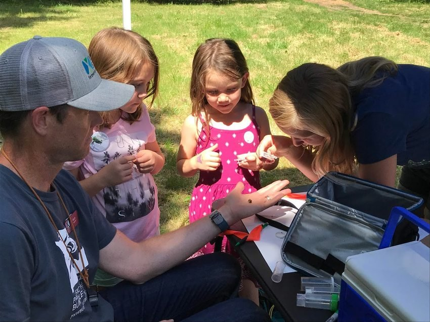 2 girls looking at a bee during Zoo Pollinator Week