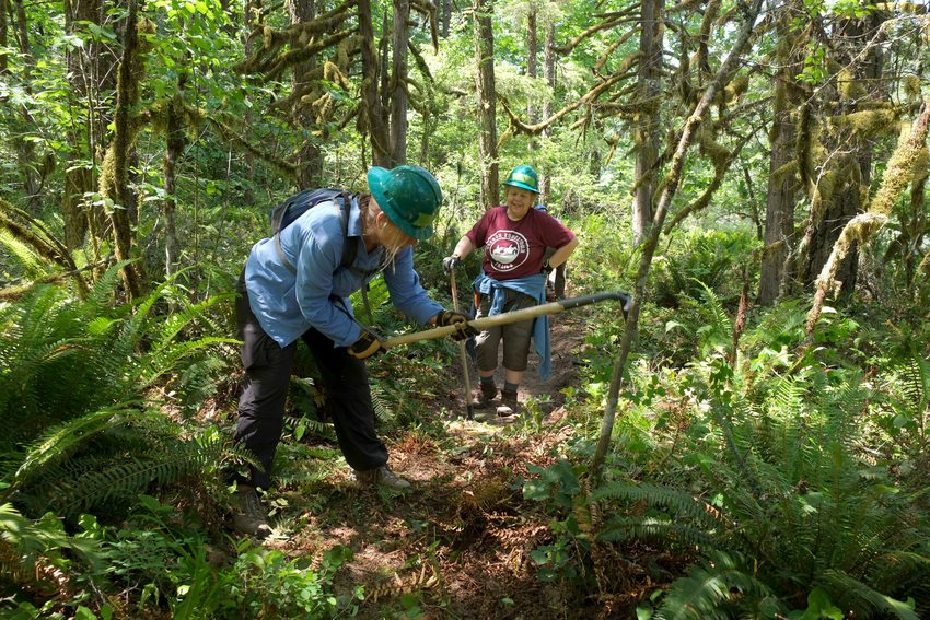 Trailkeepers of Oregon volunteers restoring a trail