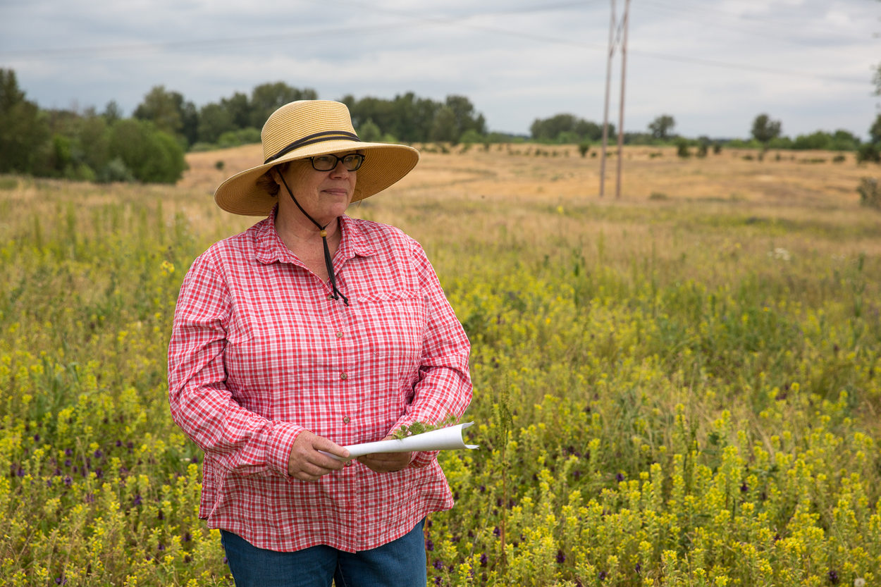 Elaine Stewart stands among wildflowers at St. Johns Prairie