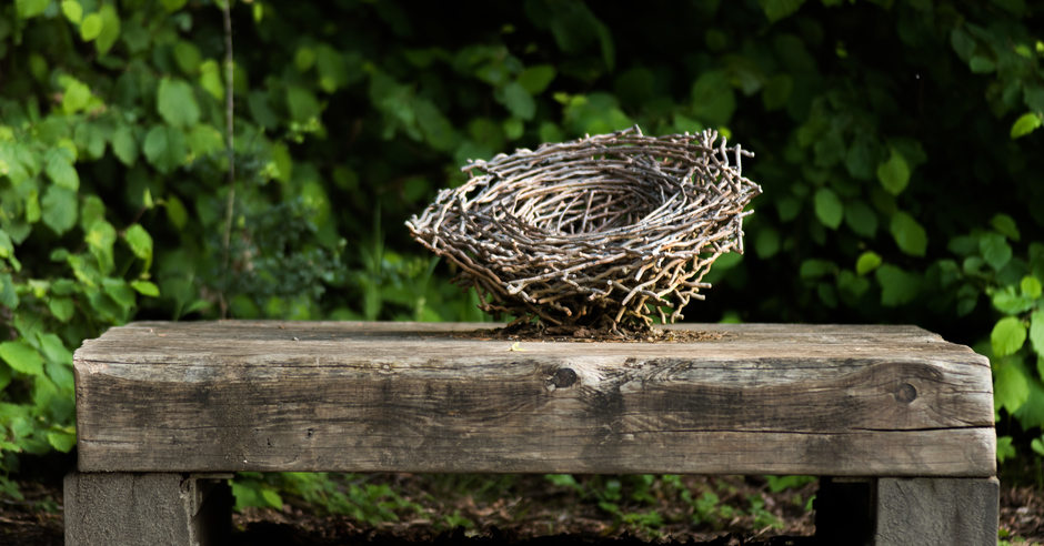 photo of Scouters Mountain art bench with bird nest