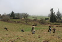 photo of planting crews at North Abbey Creek Natural Area