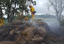 photo of Canemah Bluff wildfire
