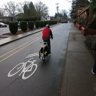 photo of a cyclist on a bike lane and a nearby pedestrian