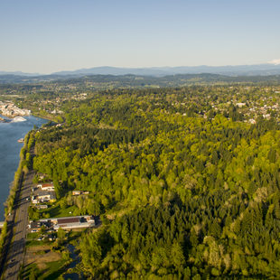 aerial view of Canemah Bluff, Mount Hood and Willamette Falls