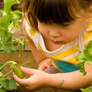 photo of girl with garden pea