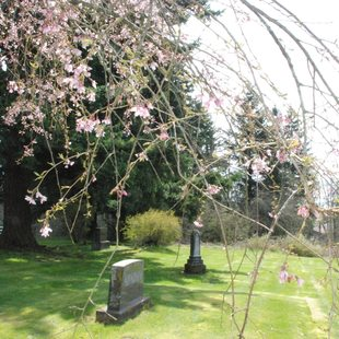photo of Pleasant Home Cemetery