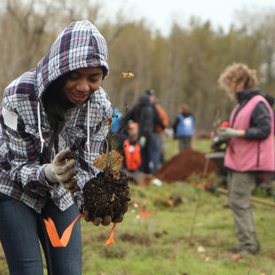 photo of girl at volunteer planting
