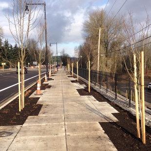 Oregon City McLoughlin Blvd Enhancement Plan, Phase 2