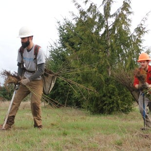 photo of planting at Clear Creek Natural Area