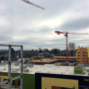 Cranes at The Radiator