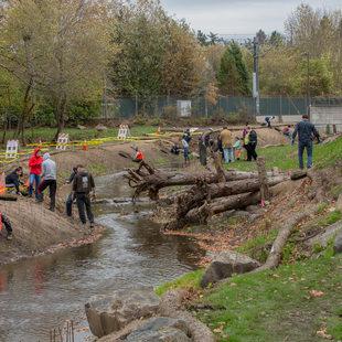 photo of Hall Creek restoration