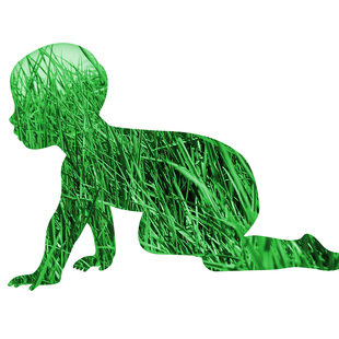 silhouette of baby on lawn