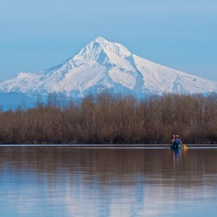 photo of Smith and Bybee Wetlands with Mount Hood in background