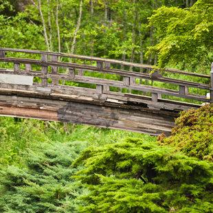 photo of Springwater Trail at Main City Park in Gresham