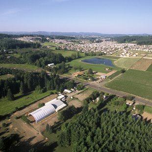 Scholls Ferry Farm
