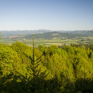 photo of Chehalem Ridge Natural Area