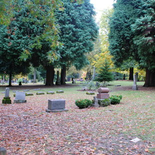 photo of Lone Fir Cemetery