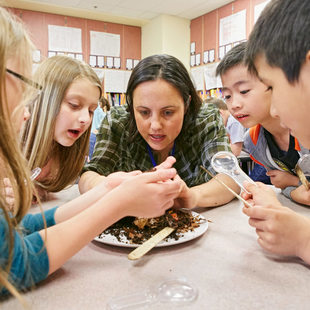 Metro educator examining worms with elementary students